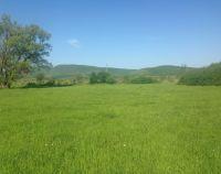 №10794826, продается земельный участок, участок 3.77 га, граница села, с.Орлиное, Крым, Украина