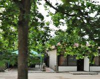 №11699242, продается ресторан, кафе (общепит), площадь 133 м², ул.Коломийца Генерала, 8А, г.Севастополь, Крым, Украина
