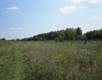 №11984642, продается земельный участок, участок 24 сот, Гоголевский сельсовет, с.Гоголев, Киевская область, Украина