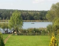 №11984811, продается земельный участок, участок 24 сот, -, с.Лесники, Киевская область, Украина