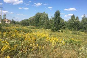 №13171737, продается земельный участок, участок 10 сот, Витянская, с.Тарасовка, Киевская область, Украина