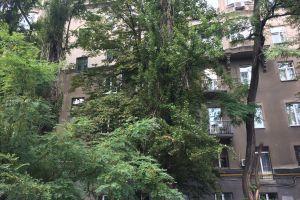 №13195045, сдается двухкомнатная квартира, 2 комнаты, площадь 57 м², ул.Дарвина, 8, г.Киев, Киевская область, Украина