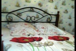 №13527797, сдается посуточно квартира, 1 комната, площадь 50 м², ул.Срибнокильская, г.Киев, Киевская область, Украина