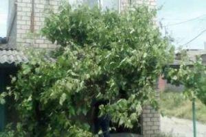 №13534599, продается гараж, паркоместо, площадь 67 м², ул.Заводская, г.Николаев, Николаевская область, Украина