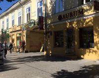 №13635627, продается помещение свободного назначения, ул.Дерибасовская, 16, г.Одесса, Одесская область, Украина
