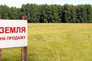 №13666563, продается земельный участок, участок 1048 га, Приморская, пгт.Ширяево, Одесская область, Украина